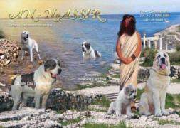 Продам: щенки среднеазиатской овчарки в Севастополе